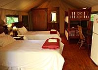 Baleia Vista Luxury Tents